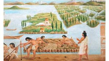 Chinampas agriculture.
