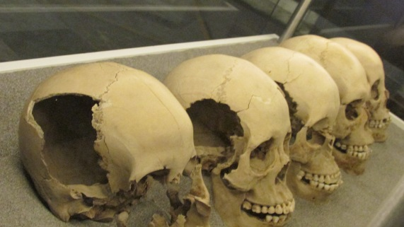 The skulls of sacrificial victims at the Templo Mayor. These were usually displayed on a large rack in front of the temple. (Mexico City, Mexico, 2016.)