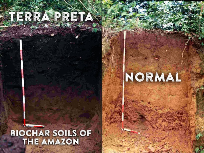 4-Terra-Preta-biochar-soils-of-the-Amazon-1024x768
