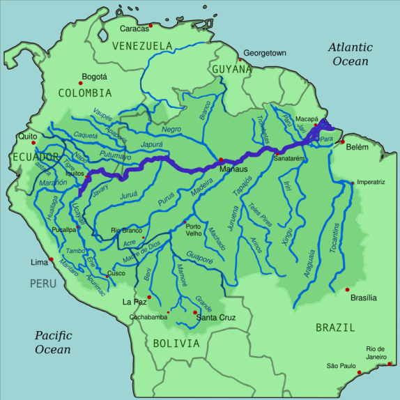 The Amazon River Basin contains 20% of the water flowing through the world's rivers. Most of its tributaries would constitute the largest river on any other continent, but are here dwarfed by the mighty Amazon, which is six miles wide by the time it approaches the Atlantic Ocean. The river runs through the Amazon Rainforest, which accounts for half of the world's remaining rainforest.