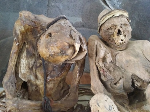 Noble mummies from the Inca period. These are not the mummies of Sapa Inca themselves, as all such mummies were hunted down and destroyed by the Spanish in an effort stamp out paganism during the colonial period.
