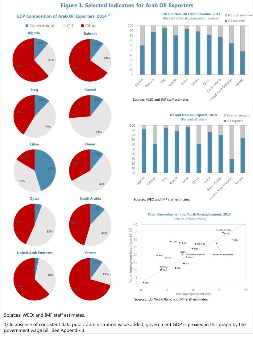Economic Diversification in Oil-Exporting Arab Countries,Prepare