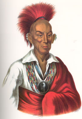 chief_black_hawk