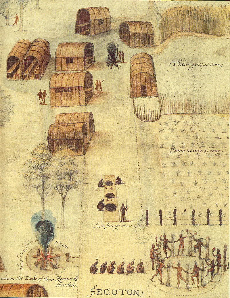 Illustration of corn cultivation in mounds by Algonquian village in North Carolina. Watercolor by John White c. 1585.