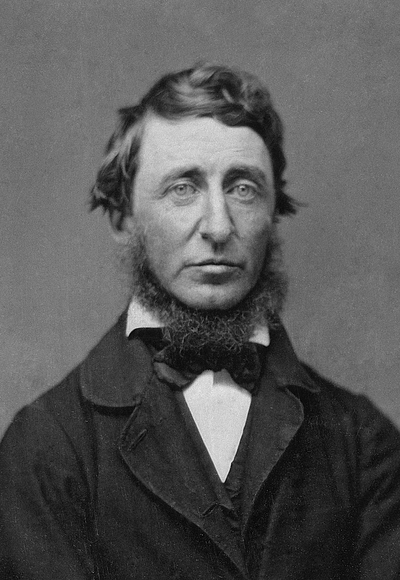 800px-Benjamin_D._Maxham_-_Henry_David_Thoreau_-_Restored_-_greyscale_-_straightened
