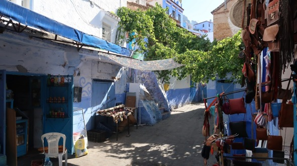 In the medina of Chefchaouen, residents have cultivated a vast, interwoven web of grape vines that grow overhead. The grapes can be eaten or turned into wine; their leaves provide fresh air and shade, and can also be eaten.