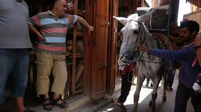 Larger deliveries in the medina might be made to by mules. As a result, pedestrian fatalities - a real problem in every American community - are almost unheard of in the medina.