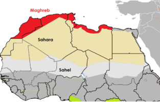 Map-MENA-Maghreb-1303-x-652-1-313x200